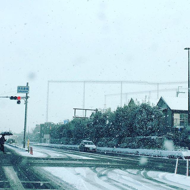 雪!雪!雪!!#陰ヨガ レッスンやりますムリ!と思ったら、気にせず休んで下さいね。