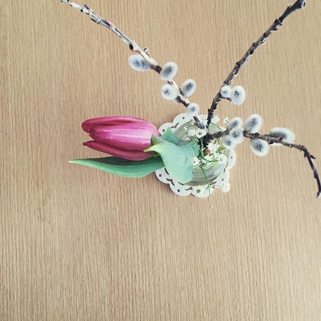 春がきましたね。4月から、レッスンが増えます。おかげさまです。#草津#ヨガ#ヒノリヨガスタジオ