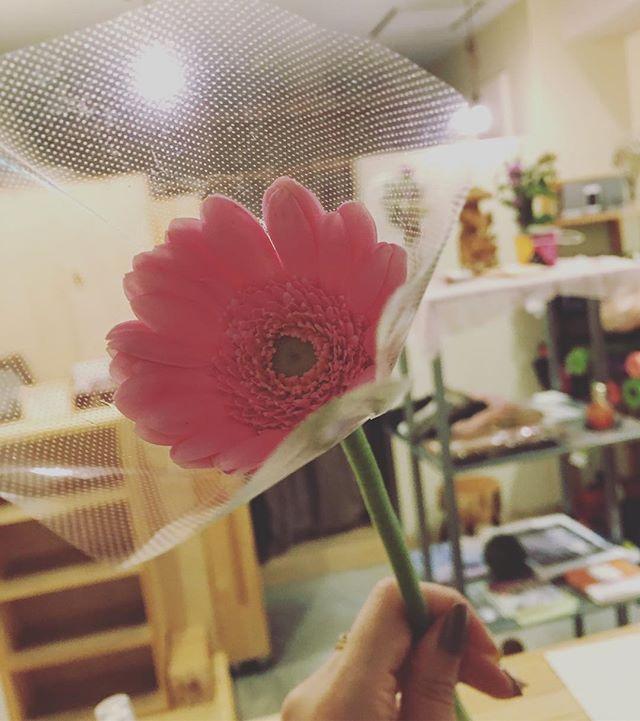 『新月だから、なんとなく』って、ステキな笑顔とともに思いがけないお花のプレゼント かわいく飾らせていただきまっす!ありがとう#ヒノリヨガスタジオ #ヨガ #陰ヨガ #草津#yoga #hinoriyogastudio